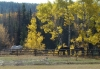 Autum on th Ranch