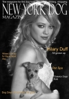 Hilary Duff New York Dog